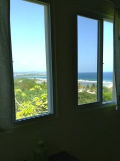 View from the jungle room
