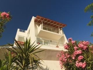 3 Bedroom Seaview Villa Kalkan ( free car or trans