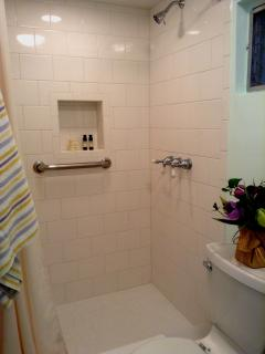 Recently remodeled roomy shower. Toiletries are complimentary.
