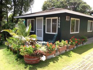cottage  downtown Kapaa one block to beach access