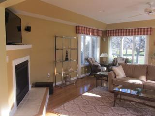Another view of the sun room, with gas fireplace and TV