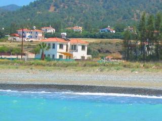 Elizabeth Beach front Villa, Argaka