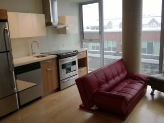 Luxury Condo - Central Ottawa close to all areas!
