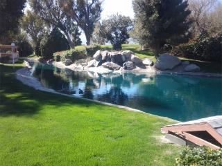 Tranquility by the Waterfall, Indio