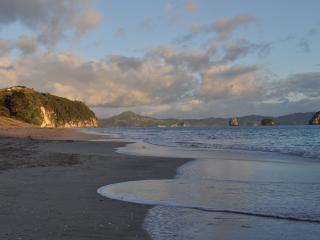 Absolute Hahei Beachfront