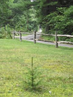 A split rail fence and steel lampposts greet our guests as they come up the road