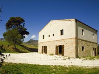 Old stone farmhouse surronded by olive trees, Civitella Casanova
