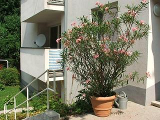 Apartment24 Grinzing - Exclusive Vienna location
