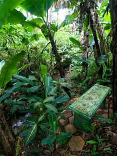 Deep in the garden, a hidden bench just for you