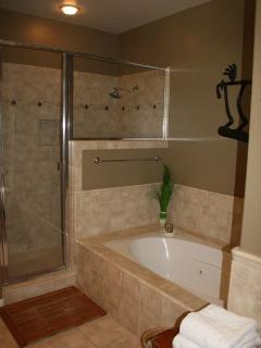 Master bath with separate shower and jetted tub.