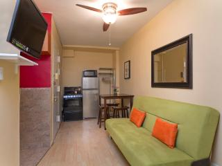 Sleeps 6! 2 Bed/1 Bath Apartment, Times Square, Awesome! (8101)