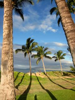 The grounds of Hale Kai O Kihei