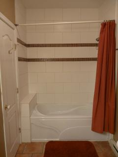 new shower and tub