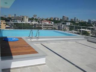 Ocean View  Apartment for rent In Santo Domingo