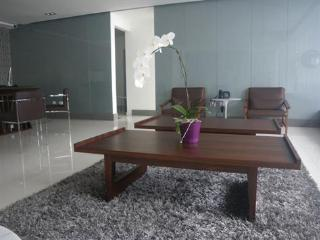 Luxury ocean view  2 bedrooms apartment for rent, Santo Domingo