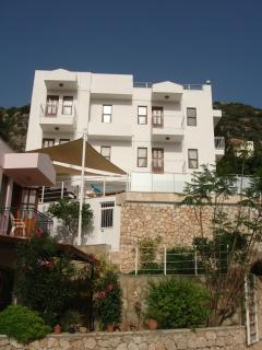 Front shot of the villa