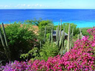 Cas Chi Chi-private, natural lux for 6 on the sea!, Willibrordus