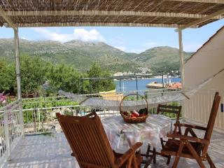 Apartment in Zaton for up to 4 persons (Dubrovnik)