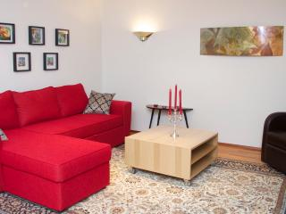 Extremely nice and spacious apartment  in centrum