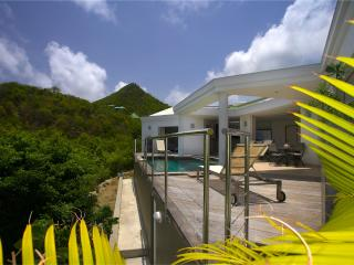 Magic Bird at Flamands, St. Barth - Ocean View, Walk To Beach, Contemporary