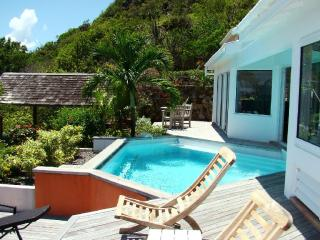 Oceana at Vitet, St. Barth - Ocean View, Pool, Private