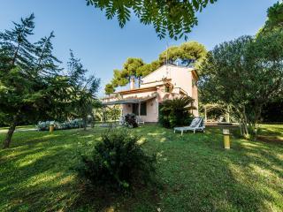 Villa Dyna, Castiglioncello