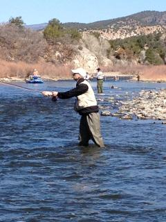 Fly fishing on Gold Streams