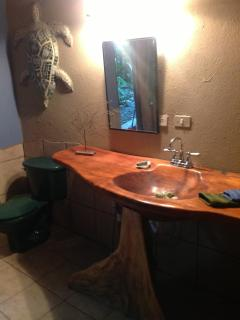 Bathroom sink and pedestal carved from a tree trunk