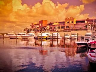CAP CANA MARINA W/ MAID SERVICE; UP TO 40% OFF!, Punta Cana