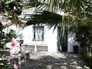 Casa Grande - large Spanish rural/beach house, Barbate