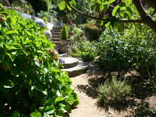In the garden of Wonders!