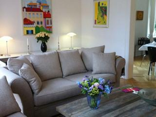 Large luxurious Copenhagen apartment in City, Copenhague