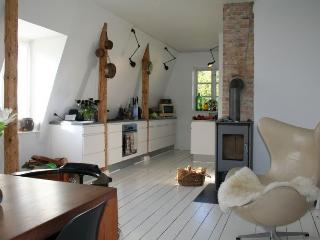 Large Copenhagen villa apartment at Charlottenlund, Copenhague