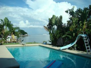 Direct access to Tampa Bay- 8' deep heated pool with diving board and slide-Watch cruises every day