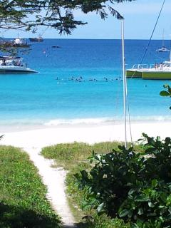 Our Beachfront with snorkelers