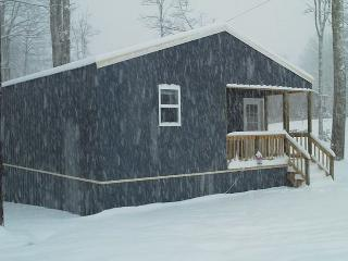 Snow Day - Cottage C1