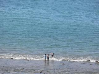 The beach below is small and secluded. Good for romantic morning or sunset walks & chlidren to play.