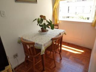 Nice and Comfortable1 Bedroom in Copacabana