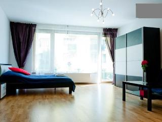 Full Equipped Flat Just For You, Prague