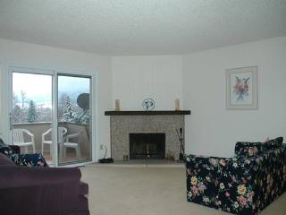Top floor Flatiron views Furnished 3 Bed Condo, Boulder