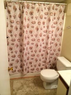 2nd Full Bath shower/bath tub in bedroom