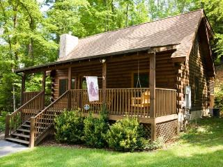 ER317 - THE CUBBY HOLE, Pigeon Forge