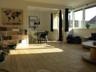 Bright and spacious Copenhagen apartment at Noerrebro, Copenhague