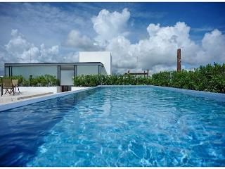 TRENDY CONDO * FREE WI-FI INTERNET * MAMITAS BEACH AREA * PENTHOUSE & JACUZZI, Playa del Carmen