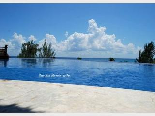 BEAUTIFUL PENTHOUSE WITH PRIVATE POOL- Steps from Mahekal beach caribbean sea, Playa del Carmen