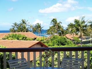 Luxury Ocean View Poipu Beach Condo