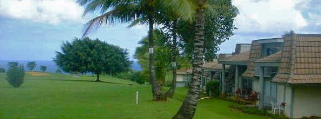 View from the Makai golf course, steps away from the condo