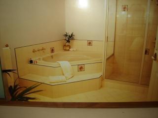 Davenport ensuite with spa bath
