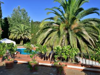 Countryside Villa close to the beach, Capezzano Pianore