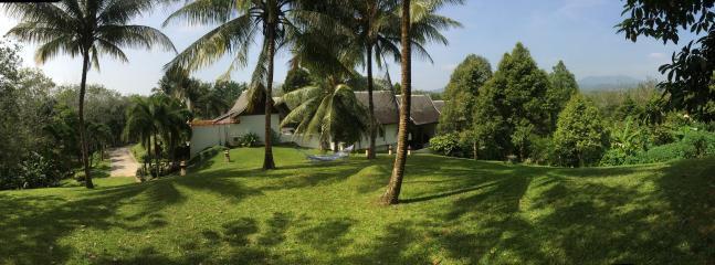 Beatiful and large Lawn in the backyard